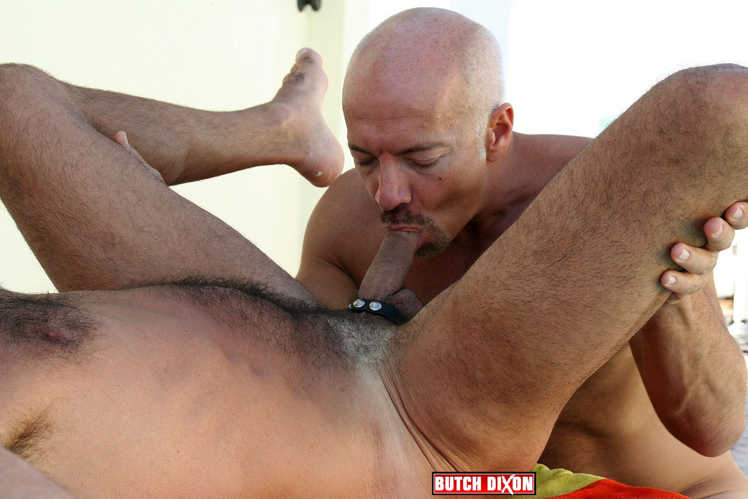 Big gay hairy daddy cock